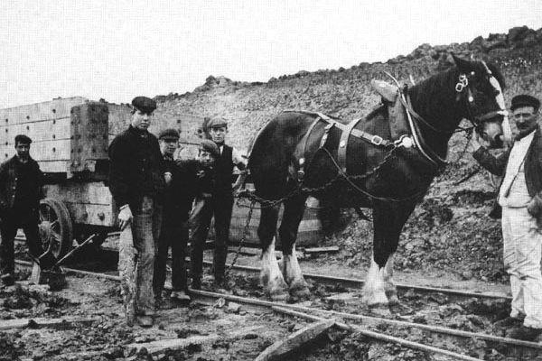 The Railway Navvies   The Construction Period
