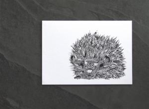 Asset 10 copy | Mrs Hedgehog