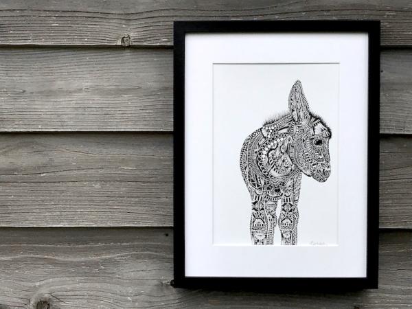 Donkey TLCS | The Donkey