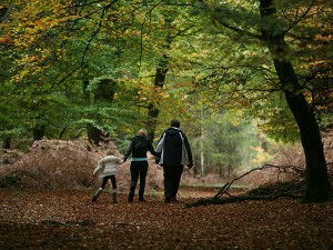 Family-at-Burley- | The New Forest