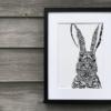Hare TLCS | The Giraffe