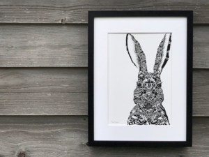 Hare TLCS | The Hare