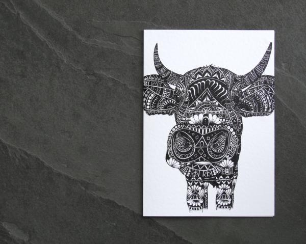 IMG_5730 copy | Mr Cow