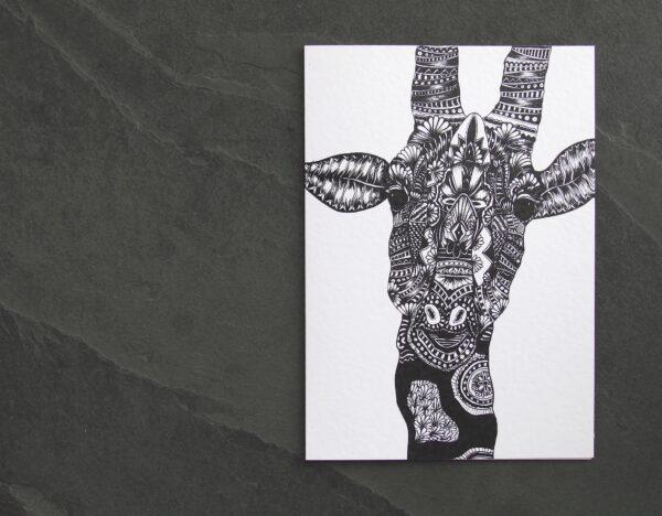 IMG_5750 | Mrs Giraffe