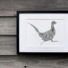 Pheasant TLCS | The Piglet