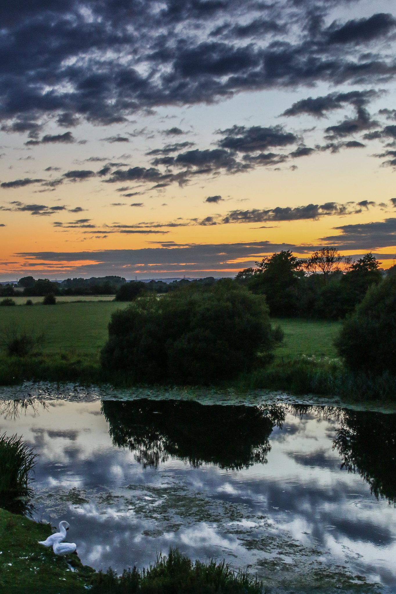 River Stour Wimborne 1 | The Stour Valley Way