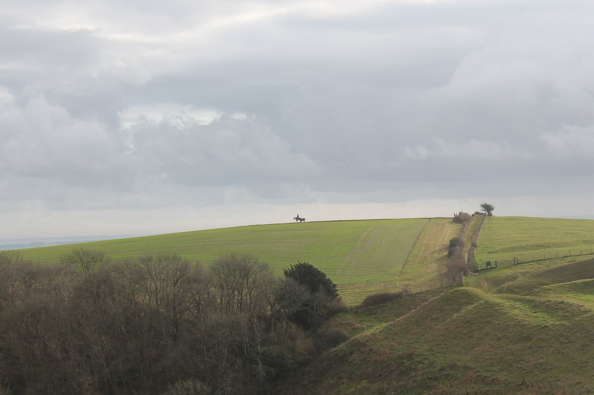 View from Hod Hill | Hod Hill