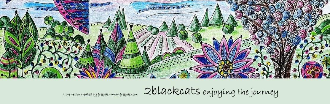 2blackcats