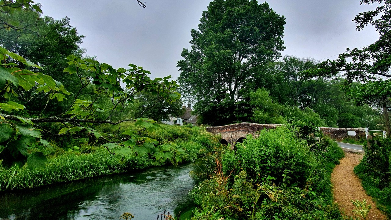 Slide26 | The River Frome: a habitat for wildlife