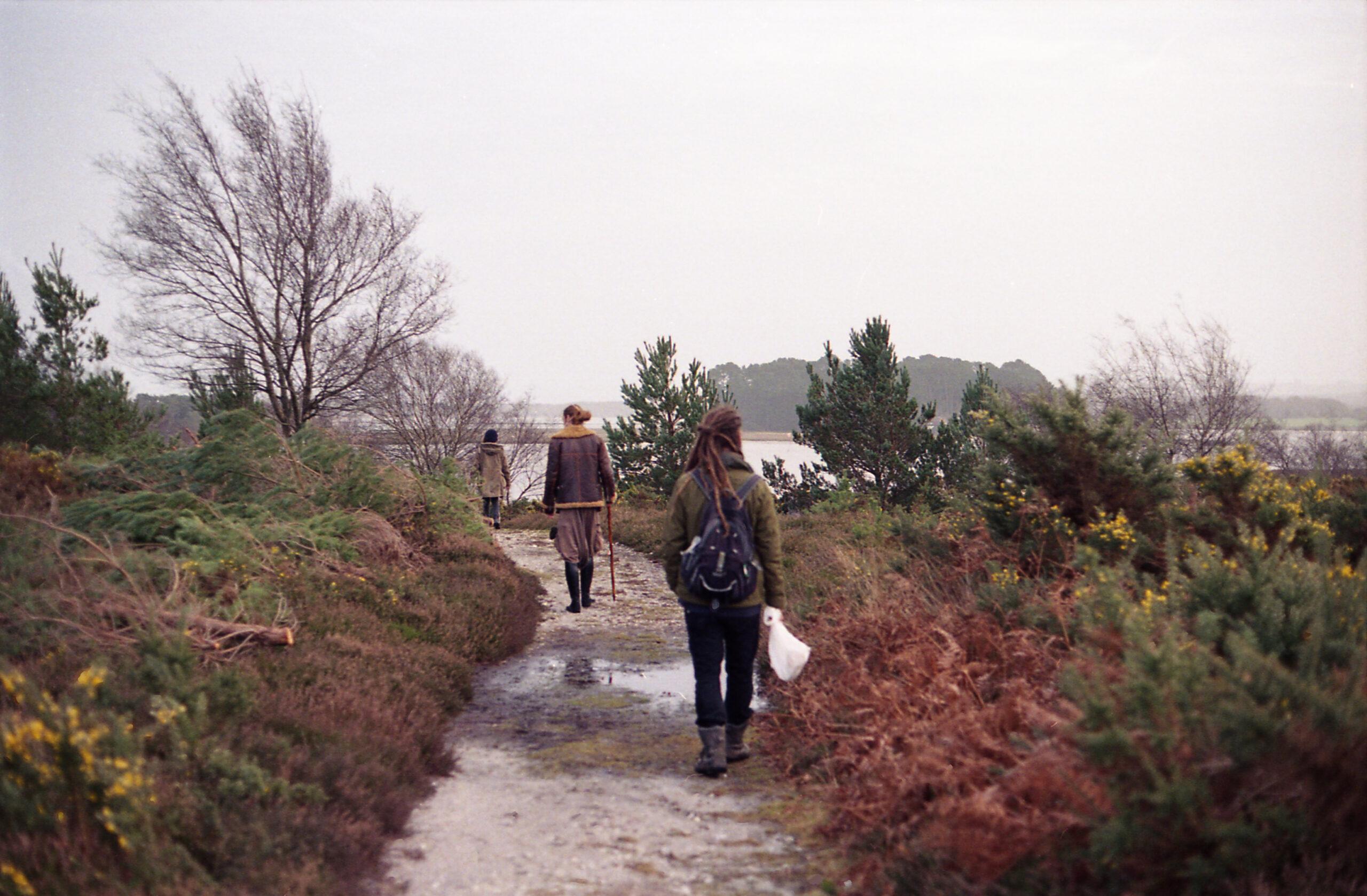 In a line | Shipstal Hill Circular Walk