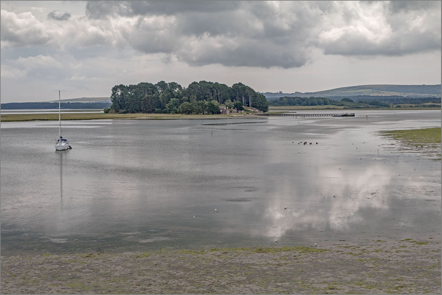 Round island Poole Harbour from Arne | Purbeck Heath: resilience in the landscape