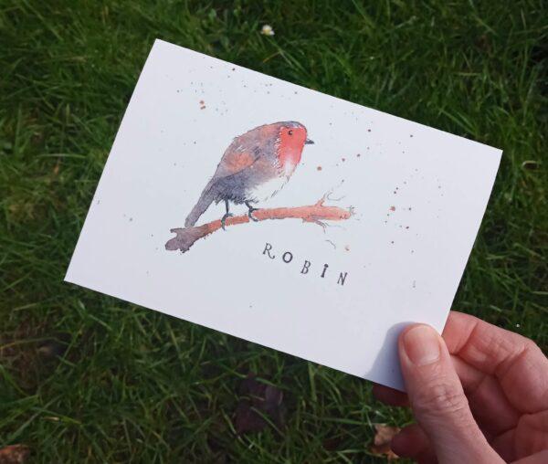 "robin A6 greeting card 1220 | Greeting card ""Robin"""
